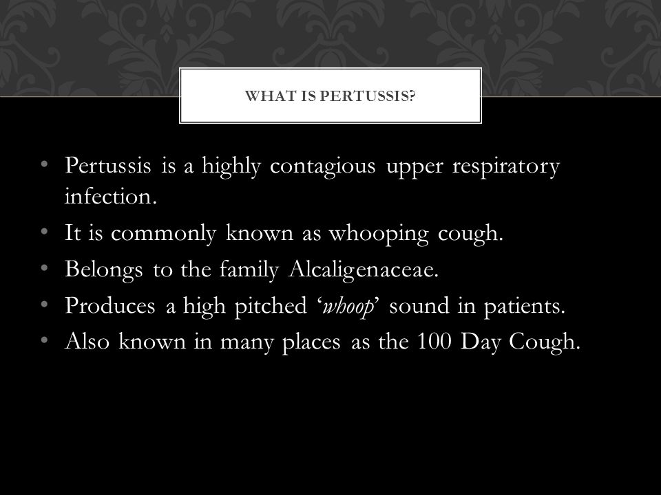 Pertussis is a highly contagious upper respiratory infection.