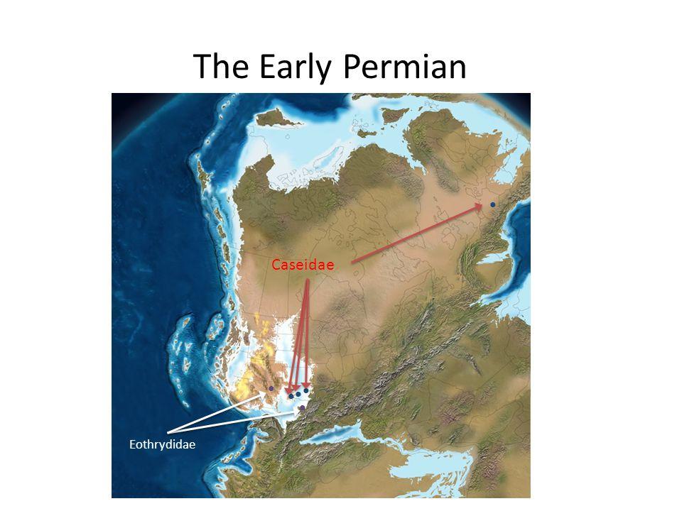 The Early Permian Eothrydidae Caseidae
