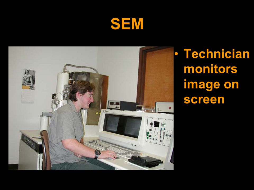 SEM Technician monitors image on screen