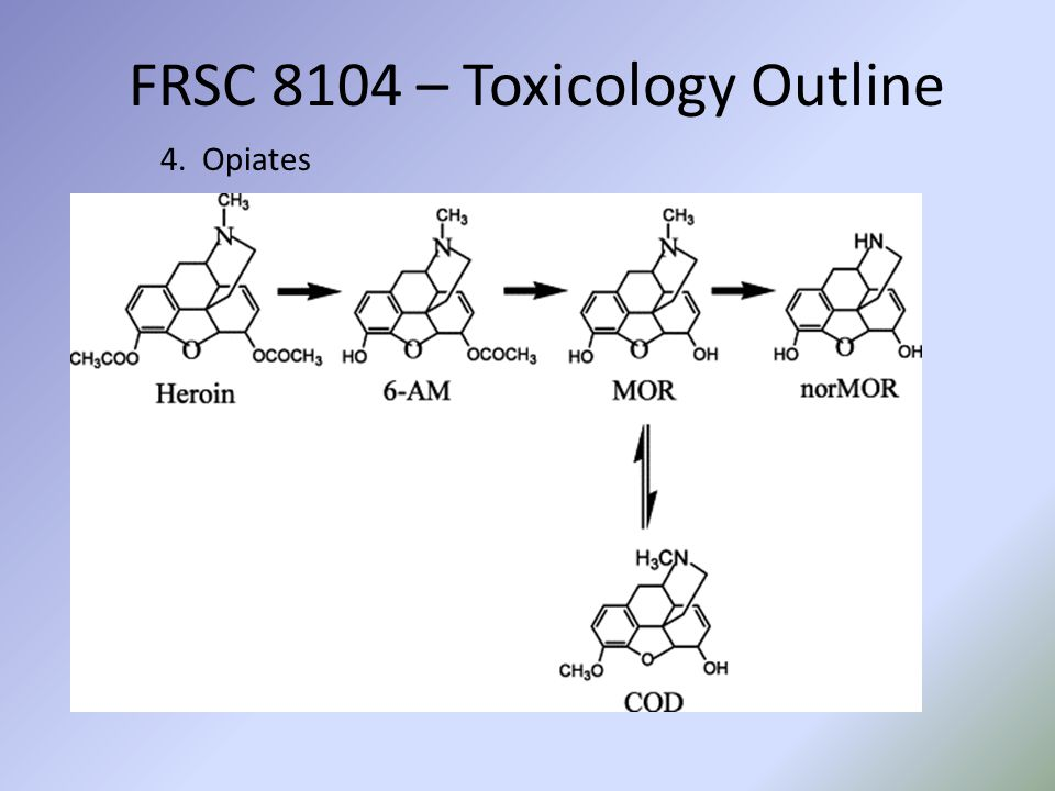 FRSC 8104 – Toxicology Outline 4. Opiates