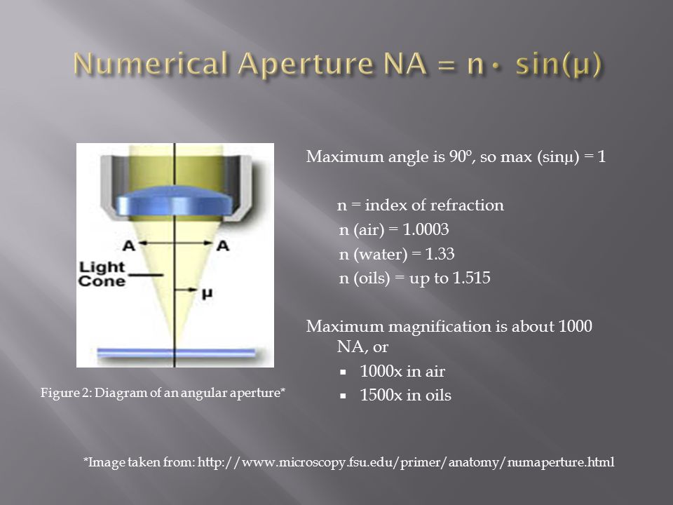 Maximum angle is 90º, so max (sinµ) = 1 n = index of refraction n (air) = 1.0003 n (water) = 1.33 n (oils) = up to 1.515 Maximum magnification is about 1000 NA, or  1000x in air  1500x in oils *Image taken from: http://www.microscopy.fsu.edu/primer/anatomy/numaperture.html Figure 2: Diagram of an angular aperture*