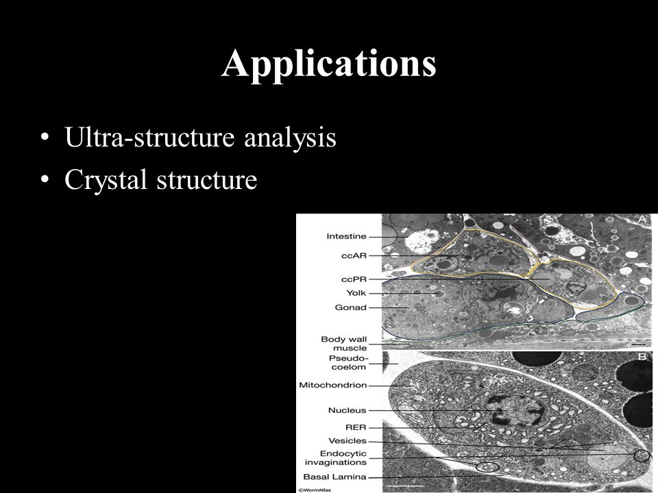 Applications Ultra-structure analysis Crystal structure