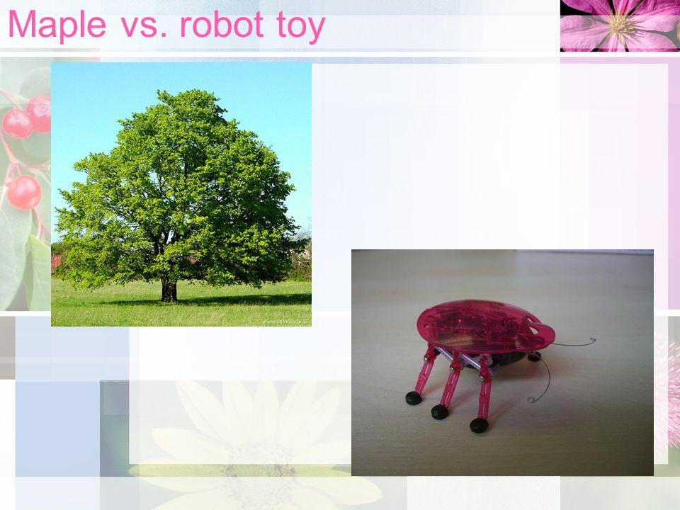 Maple vs. robot toy