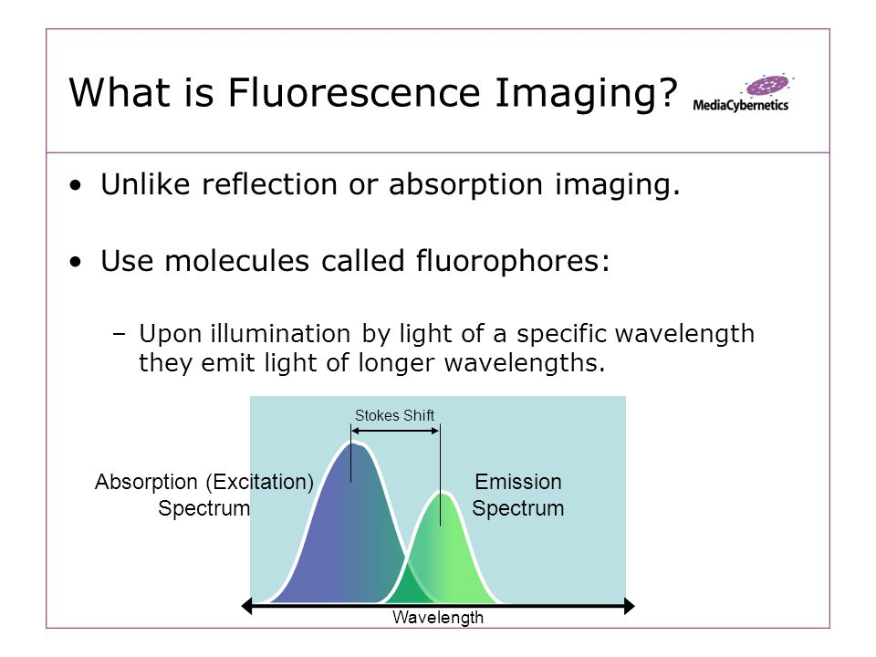 What is Fluorescence Imaging. Unlike reflection or absorption imaging.