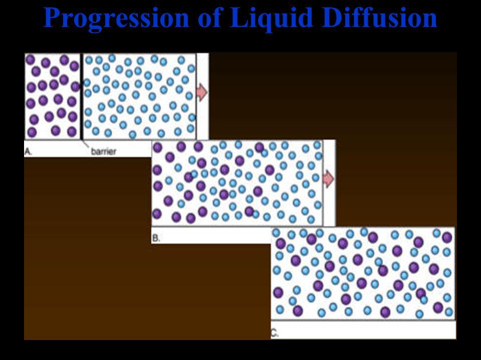 Progression of Liquid Diffusion