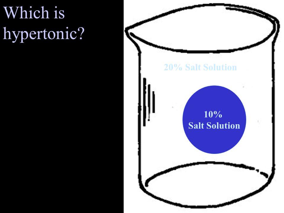 10% Salt Solution 20% Salt Solution Which is hypertonic