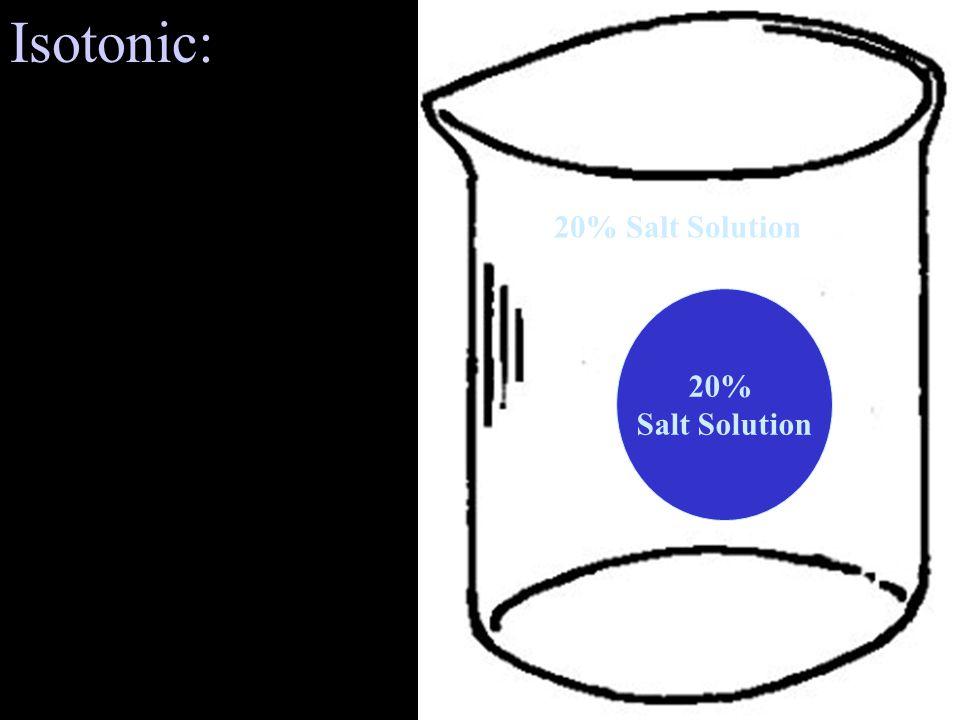 20% Salt Solution Isotonic: