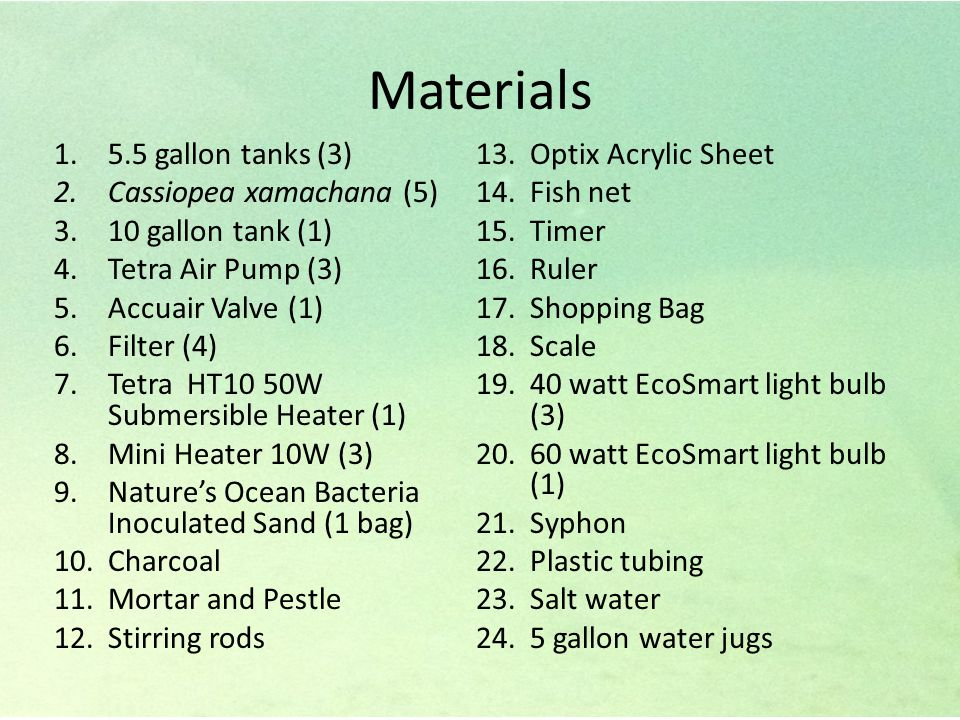 Materials 1.5.5 gallon tanks (3) 2.Cassiopea xamachana (5) 3.10 gallon tank (1) 4.Tetra Air Pump (3) 5.Accuair Valve (1) 6.Filter (4) 7.Tetra HT10 50W Submersible Heater (1) 8.Mini Heater 10W (3) 9.Nature's Ocean Bacteria Inoculated Sand (1 bag) 10.Charcoal 11.Mortar and Pestle 12.Stirring rods 13.Optix Acrylic Sheet 14.Fish net 15.Timer 16.Ruler 17.Shopping Bag 18.Scale 19.40 watt EcoSmart light bulb (3) 20.60 watt EcoSmart light bulb (1) 21.Syphon 22.Plastic tubing 23.Salt water 24.5 gallon water jugs