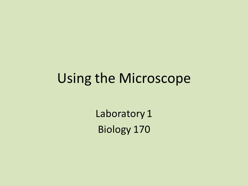 Today in Lab Exercise 1: The Compound Microscope Activity A: The parts of the Compound Microscope Activity B: Using the Compound Microscope Activity C: Depth of Focus Exercise 2: Observing Cells Activity A: Animal Cells Activity B: Plant Cells Exercise 3: The Stereoscopic Dissecting Microscope Activity A: The Parts of the Dissecting Microscope Activity B: Using the Dissecting Microscope Exercise 4: Observing an Animal Specimen Culture Microorganisms for Next Week…