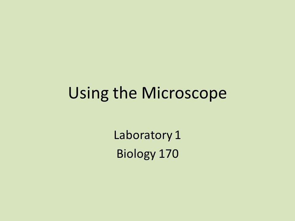 Using the Microscope Laboratory 1 Biology 170