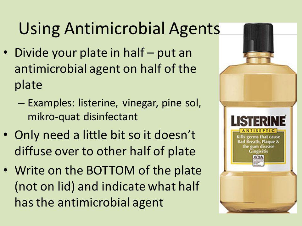Using Antimicrobial Agents Divide your plate in half – put an antimicrobial agent on half of the plate – Examples: listerine, vinegar, pine sol, mikro-quat disinfectant Only need a little bit so it doesn't diffuse over to other half of plate Write on the BOTTOM of the plate (not on lid) and indicate what half has the antimicrobial agent