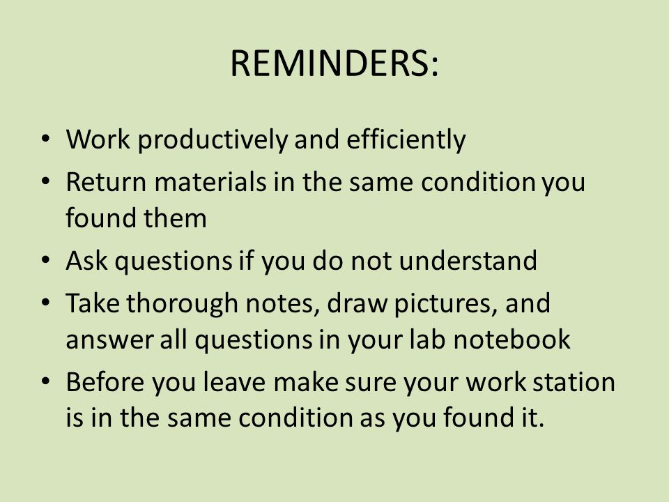 REMINDERS: Work productively and efficiently Return materials in the same condition you found them Ask questions if you do not understand Take thorough notes, draw pictures, and answer all questions in your lab notebook Before you leave make sure your work station is in the same condition as you found it.