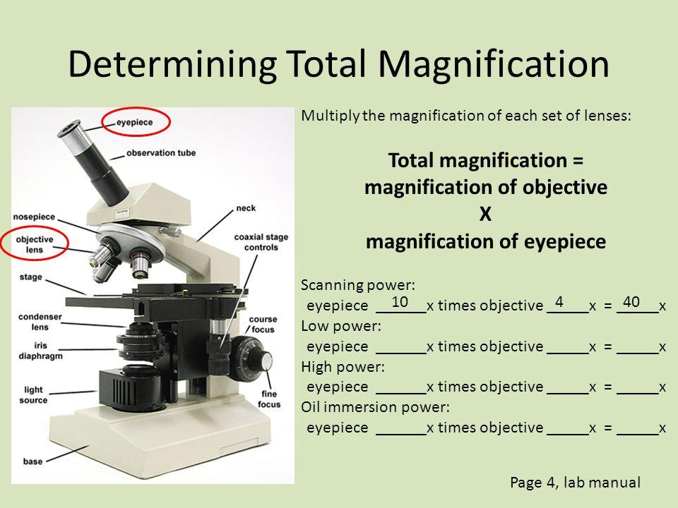 Magnification vs.