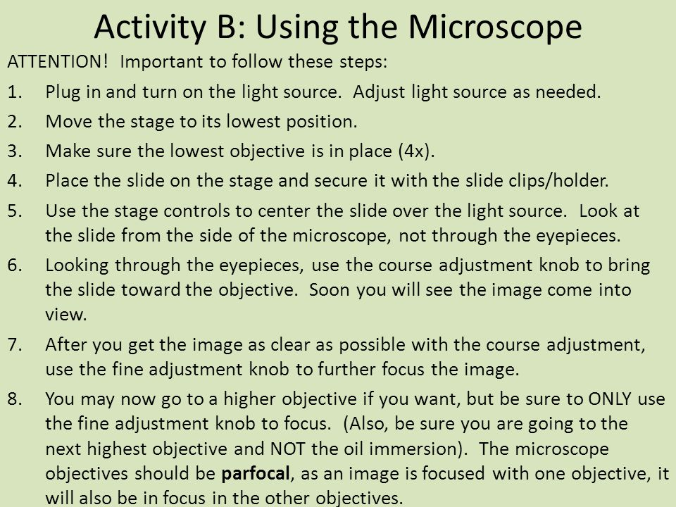 Activity B: Using the Microscope ATTENTION.