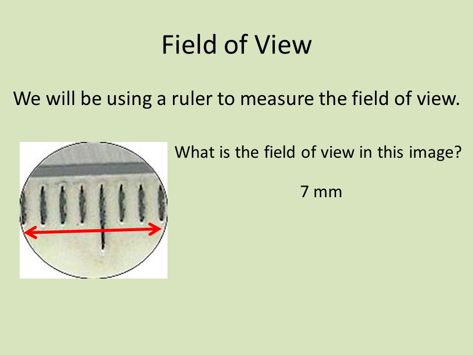 Field of View We will be using a ruler to measure the field of view.