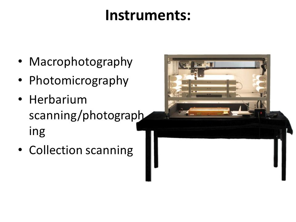 Instruments: Macrophotography Photomicrography Herbarium scanning/photograph ing Collection scanning