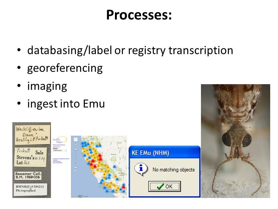 Processes: databasing/label or registry transcription georeferencing imaging ingest into Emu