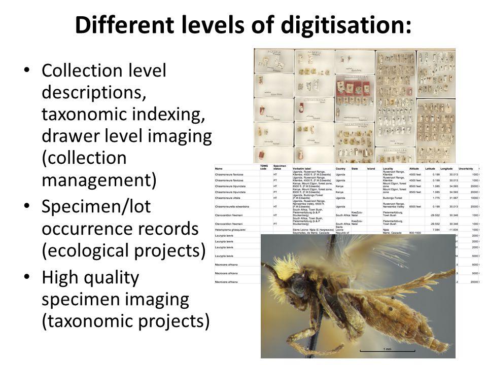 Different levels of digitisation: Collection level descriptions, taxonomic indexing, drawer level imaging (collection management) Specimen/lot occurre