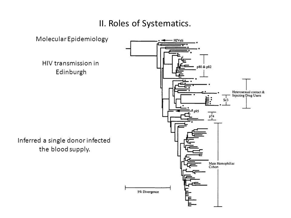 II.Roles of Systematics.
