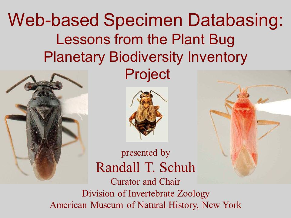 Web-based Specimen Databasing: Lessons from the Plant Bug Planetary Biodiversity Inventory Project presented by Randall T.
