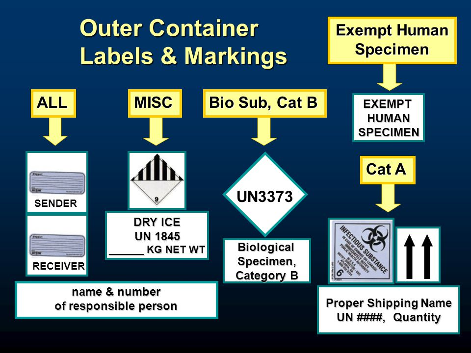 11 RECEIVER Outer Container Labels & Markings DRY ICE UN 1845 ______ KG NET WT SENDER name & number of responsible person Proper Shipping Name UN ####, Quantity BiologicalSpecimen, Category B ALLMISC Bio Sub, Cat B Cat A UN3373 Exempt Human Specimen EXEMPTHUMANSPECIMEN