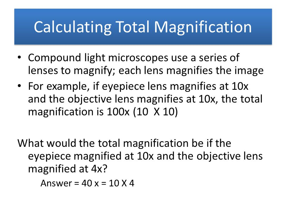 Calculating Total Magnification Compound light microscopes use a series of lenses to magnify; each lens magnifies the image For example, if eyepiece l