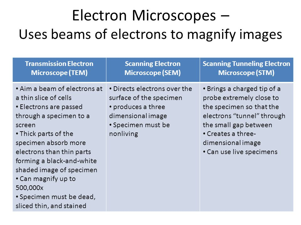 Electron Microscopes – Uses beams of electrons to magnify images Transmission Electron Microscope (TEM) Scanning Electron Microscope (SEM) Scanning Tu