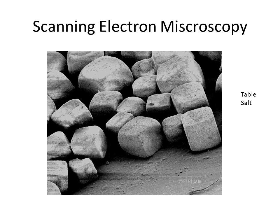 Scanning Electron Miscroscopy Table Salt