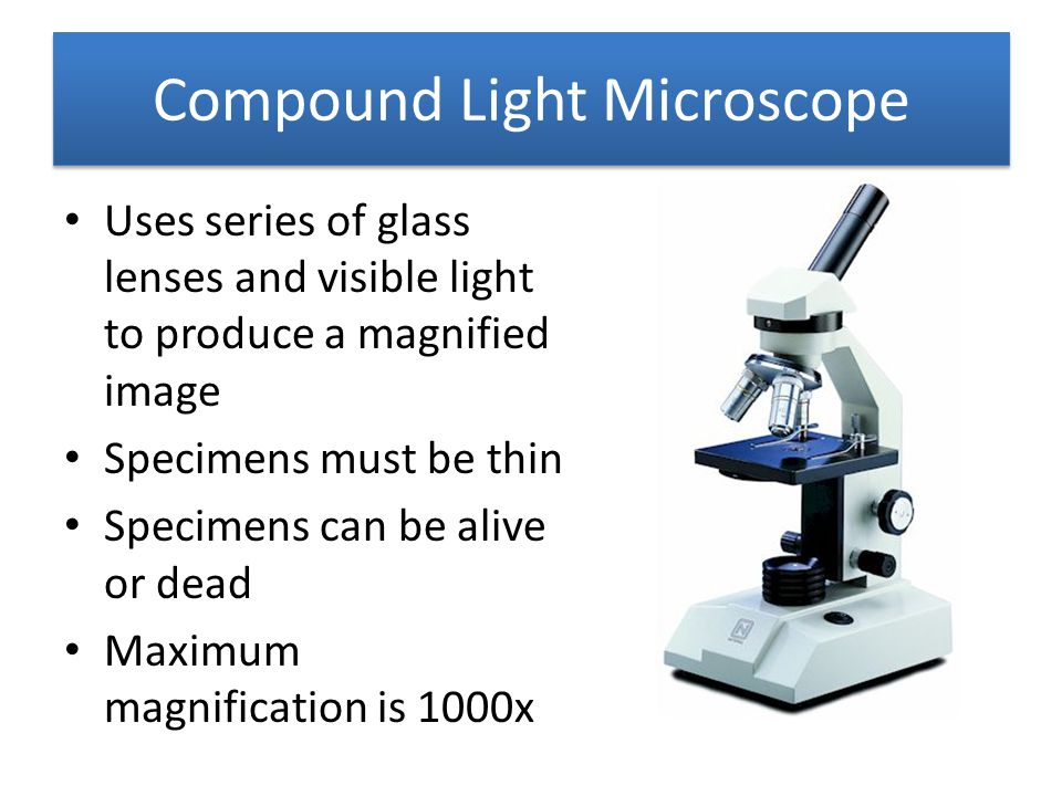 Compound Light Microscope Uses series of glass lenses and visible light to produce a magnified image Specimens must be thin Specimens can be alive or