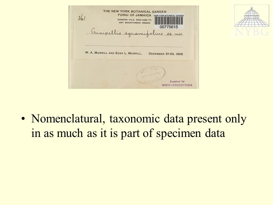 Nomenclatural, taxonomic data present only in as much as it is part of specimen data