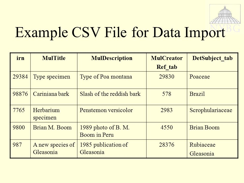 Example CSV File for Data Import irnMulTitleMulDescriptionMulCreator Ref_tab DetSubject_tab 29384Type specimenType of Poa montana29830Poaceae 98876Cariniana barkSlash of the reddish bark578Brazil 7765Herbarium specimen Penstemon versicolor2983Scrophulariaceae 9800Brian M.