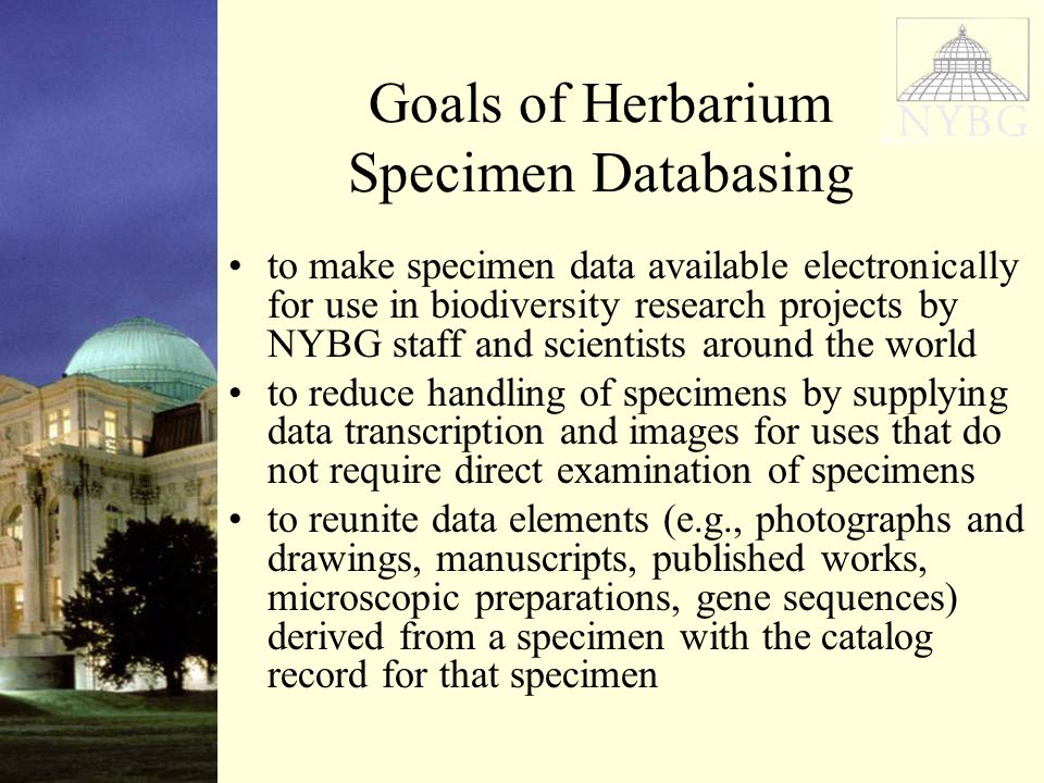 Goals of Herbarium Specimen Databasing to make specimen data available electronically for use in biodiversity research projects by NYBG staff and scientists around the world to reduce handling of specimens by supplying data transcription and images for uses that do not require direct examination of specimens to reunite data elements (e.g., photographs and drawings, manuscripts, published works, microscopic preparations, gene sequences) derived from a specimen with the catalog record for that specimen