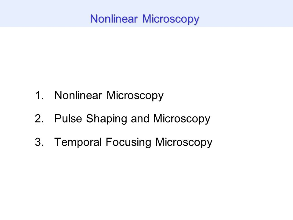 Z-scan through temporal focus THG images of biological specimen Video-Rate line scanning Temporal Focusing Microscopy