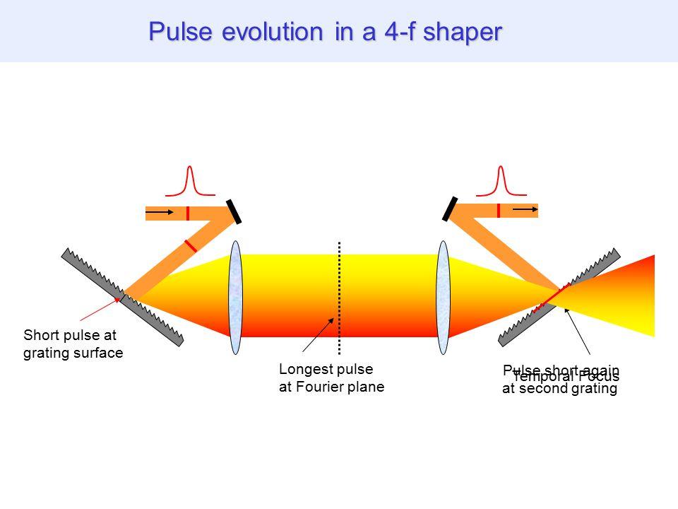 THG images of biological specimen Pulse evolution in a 4-f shaper Short pulse at grating surface Longest pulse at Fourier plane Pulse short again at second grating Temporal Focus