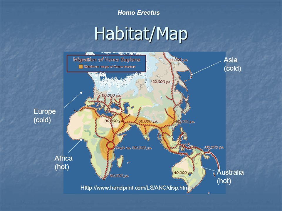 Habitat/Map Htttp://www.handprint.com/LS/ANC/disp.html Homo Erectus Asia (cold) Australia (hot) Africa (hot) Europe (cold)