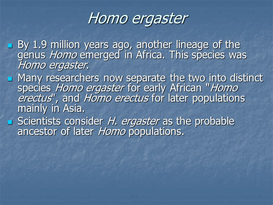 Homo ergaster By 1.9 million years ago, another lineage of the genus Homo emerged in Africa.