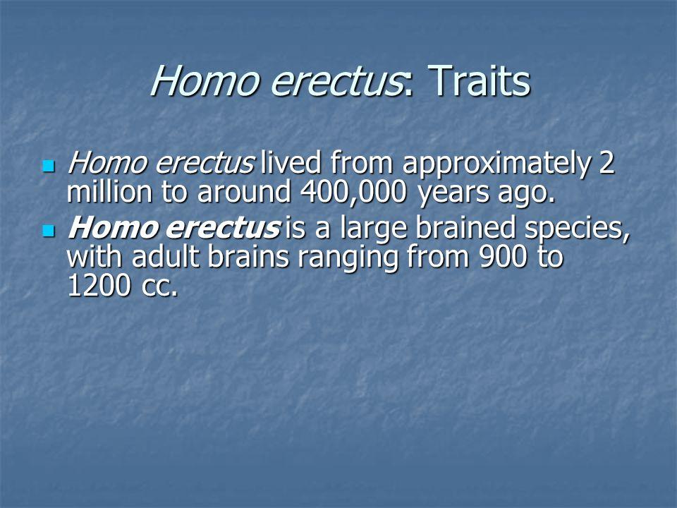 Homo erectus: Traits Homo erectus lived from approximately 2 million to around 400,000 years ago. Homo erectus lived from approximately 2 million to a