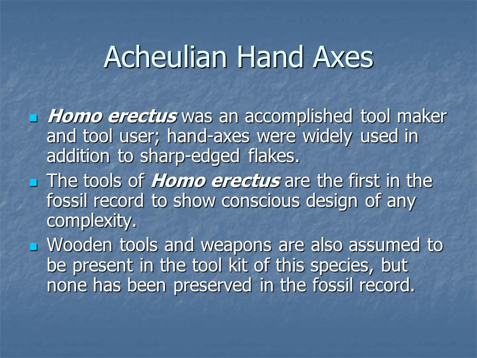 Acheulian Hand Axes Homo erectus was an accomplished tool maker and tool user; hand-axes were widely used in addition to sharp-edged flakes. Homo erec