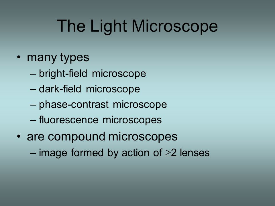 The Light Microscope many types –bright-field microscope –dark-field microscope –phase-contrast microscope –fluorescence microscopes are compound microscopes –image formed by action of  2 lenses