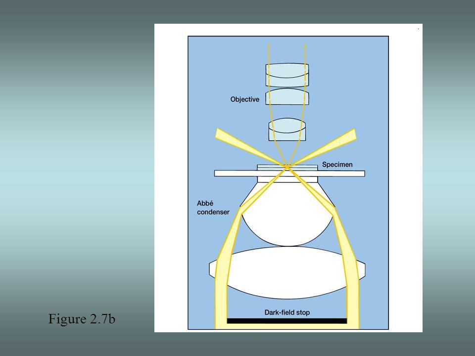 Figure 2.7b