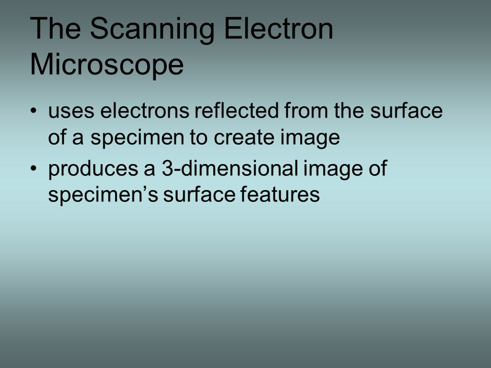 The Scanning Electron Microscope uses electrons reflected from the surface of a specimen to create image produces a 3-dimensional image of specimen's surface features