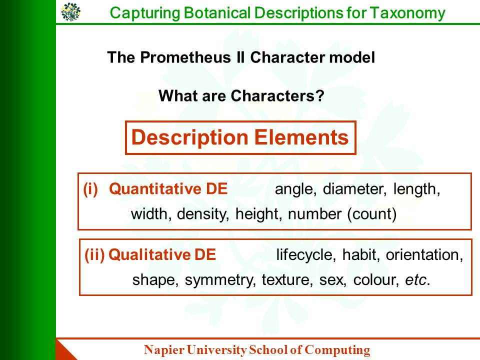 Napier University School of Computing Capturing Botanical Descriptions for Taxonomy The Prometheus II Character model What are Characters.