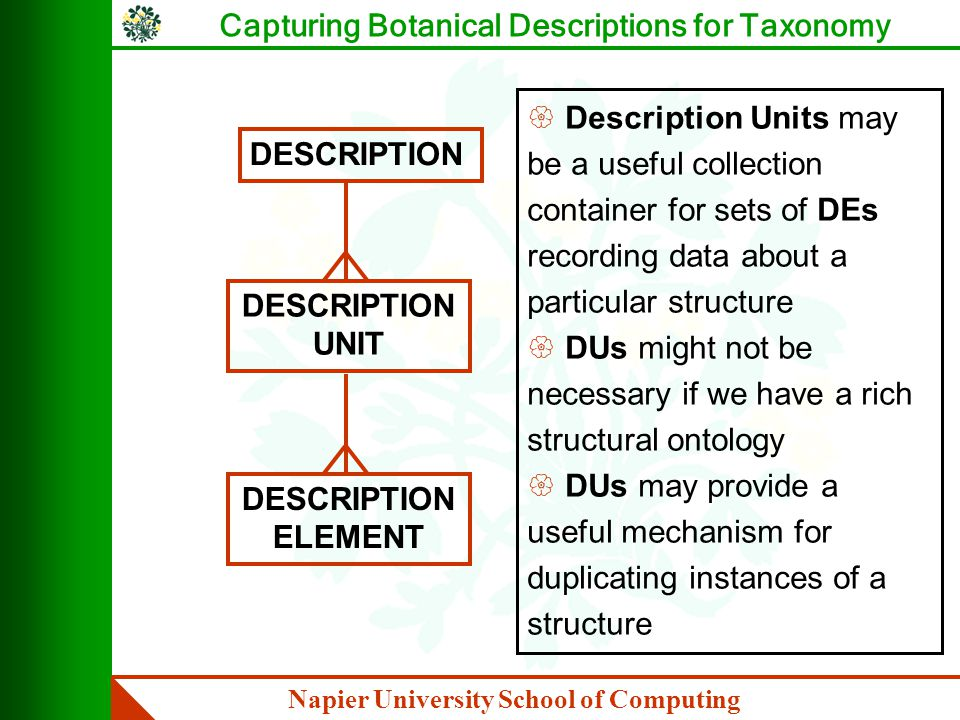 Napier University School of Computing Capturing Botanical Descriptions for Taxonomy PROBLEMS WITH TYPES IN THE ONTOLOGY { should a subtype inherit all of its supertype's potential Part_Of relations, or can these be restricted, and can it participate in type specific Part_Of relations .