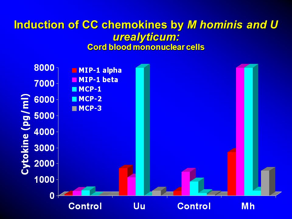 Induction of CC chemokines by M hominis and U urealyticum: Cord blood mononuclear cells