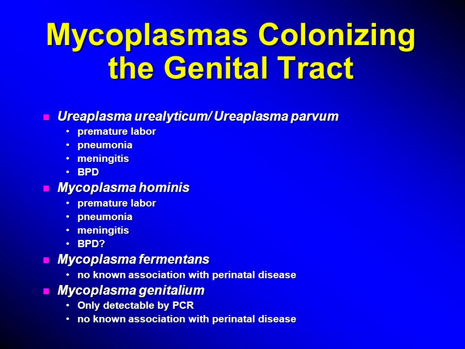 Epidemiology of Genital Tract Mycoplasmas n Commonly found 40-80% pregnancies colonized with Ureaplasma urealyticum40-80% pregnancies colonized with Ureaplasma urealyticum 5-50% pregnancies colonized with Mycoplasma hominis5-50% pregnancies colonized with Mycoplasma hominis n Increased colonization with increased number of sexual partnersincreased number of sexual partners earlier age of first intercourseearlier age of first intercourse isolation of other STDs (Chlamydia trachomatis)isolation of other STDs (Chlamydia trachomatis)