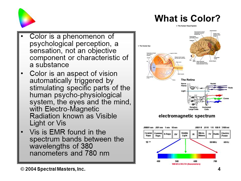 © 2004 Spectral Masters, Inc.4 What is Color.