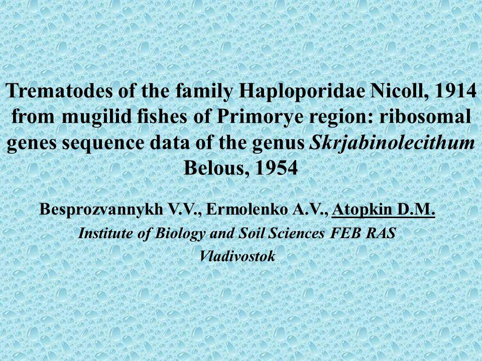 Systematic position of the genus Skrjabinolecithum Type Platyhelminthes Class Trematoda Subclass Digenea Family Haploporidae Subfamily Waretrematinae Genus Skrjabinolecithum Belous, 1954 Species: – S.
