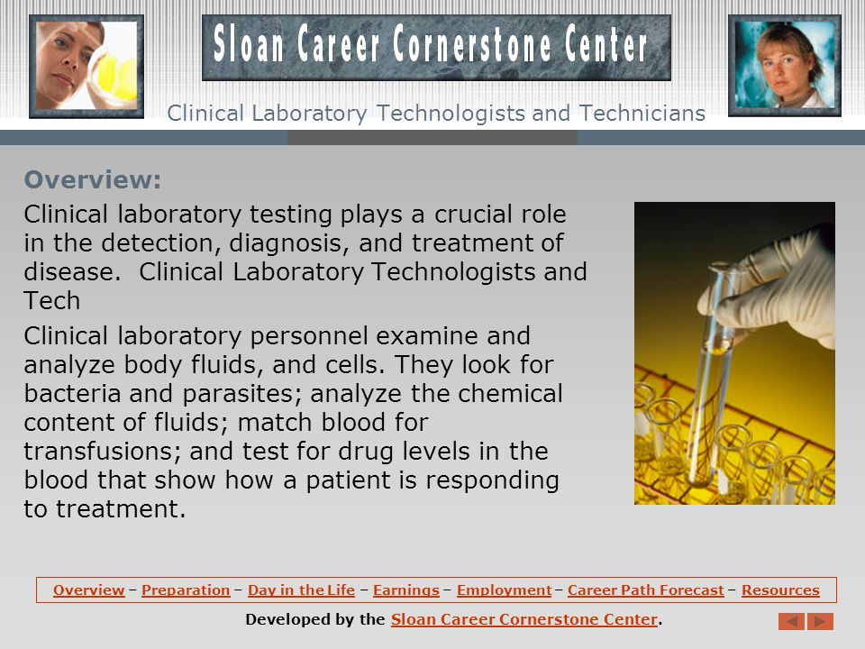 OverviewOverview – Preparation – Day in the Life – Earnings – Employment – Career Path Forecast – ResourcesPreparationDay in the LifeEarningsEmploymentCareer Path ForecastResources Developed by the Sloan Career Cornerstone Center.Sloan Career Cornerstone Center Clinical Laboratory Technologists and Technicians