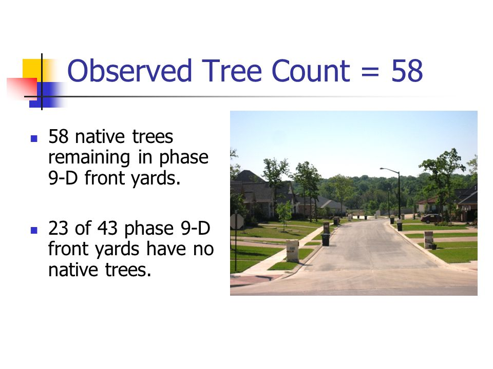 Observed Tree Count = 58 58 native trees remaining in phase 9-D front yards. 23 of 43 phase 9-D front yards have no native trees.