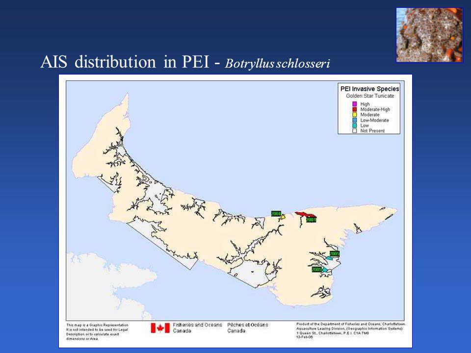 AIS distribution in PEI - Botryllus schlosseri